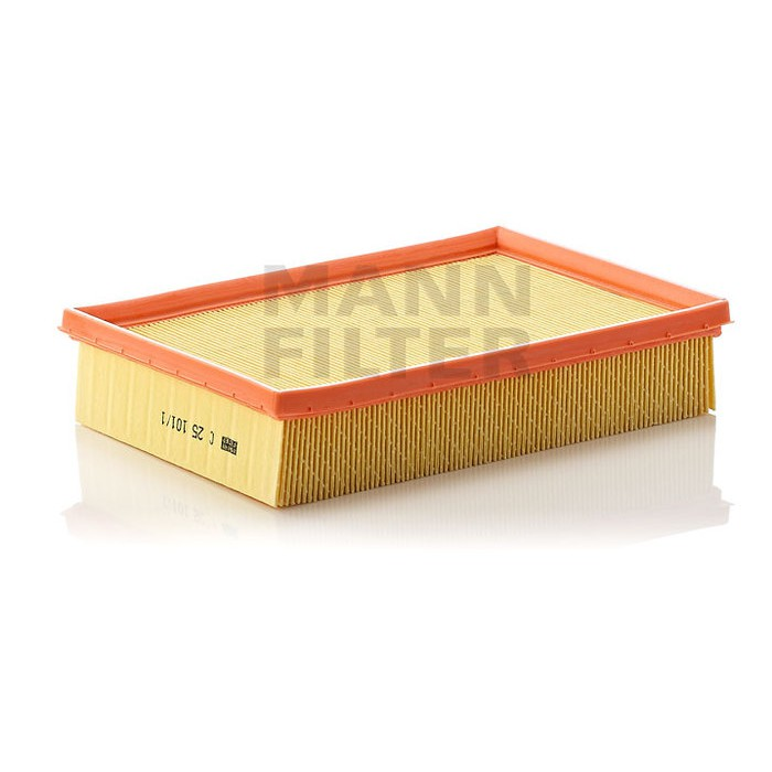 MANN-FILTER FILTR POWIETRZA C 25 101/1